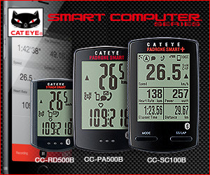 smart_300_250